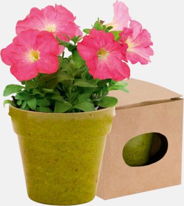 Grön Blomkruka och frön - med reklamtryck
