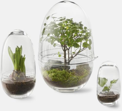Transparent Växthus från Design House Stockholm
