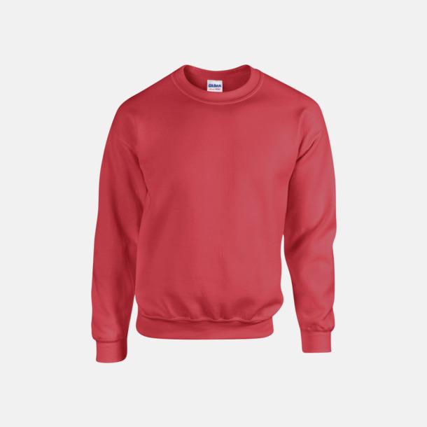 Antique Cherry Red (herr) Tröjor i många färger från Gildan med reklamtryck
